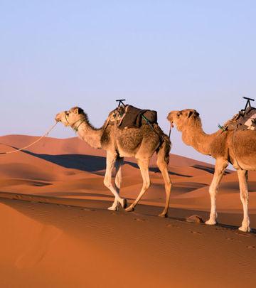 Bliski Istok, RealnO