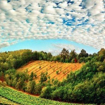PROVERENO: 25 razloga zašto nikada ne bi trebalo da posetite Srbiju! (FOTO)
