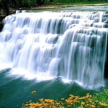 Nijagara u Jagodini: Palma gradi vodopad koji rešava psihičke probleme