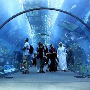 Ne propustite: Najčudniji šoping na svetu u Dubaiju
