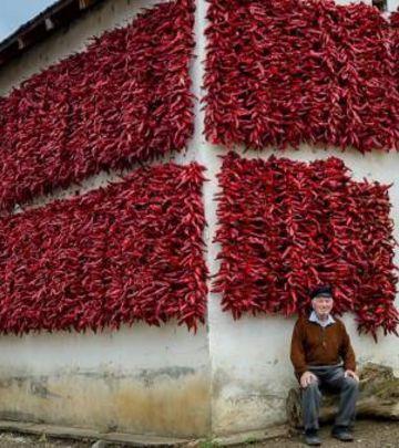 FOTO-PRIČA: Fasade od paprika zaštitni znak Donje Lokošnice