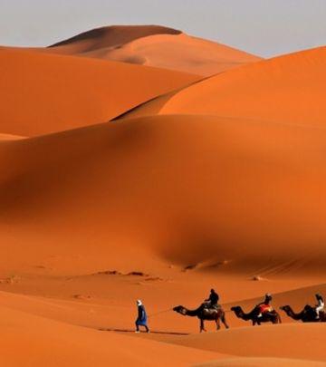 Priča koja će vas raznežiti: Čudo u Arabiji (VIDEO)