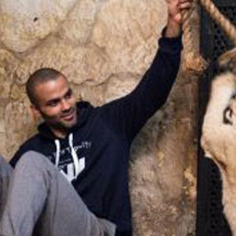 NBA zvezda se zaigrala sa lavom (VIDEO)