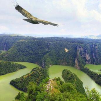 Njegovo veličanstvo Dunav
