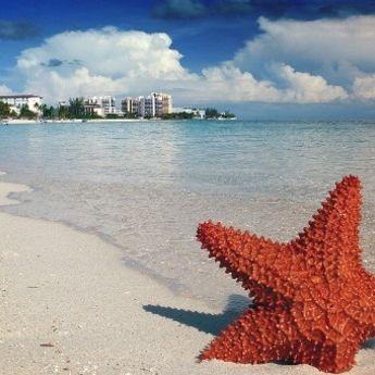 Nišlijka na Bahamima: Kad želje postanu stvarnost (FOTO)