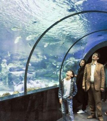 Iran: Zavirite u najveći akvarijum na Bliskom Istoku (VIDEO)