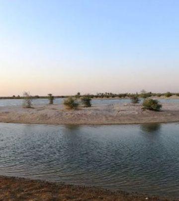 Nema više kampovanja na jezeru: Al Qudra samo za šetnju