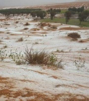 VIDEO DANA: Oluja, kiša, grad... Zabelelo se i u pustinji!