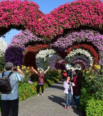 DUBAI MIRACLE GARDEN: 100 MILIONA cvetova na jednom mestu