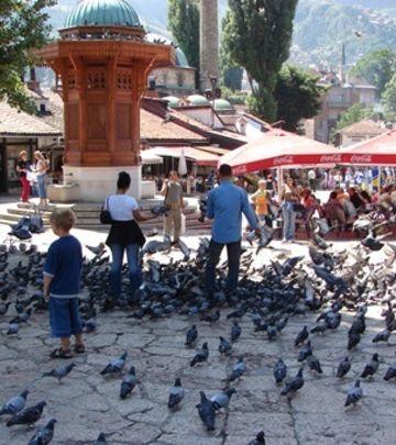 Dobre vesti: Od juna nova linija Sarajevo – Rijad