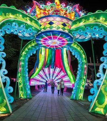 Dubai Garden Glow: Tema sezone – SJAJNI SAFARI