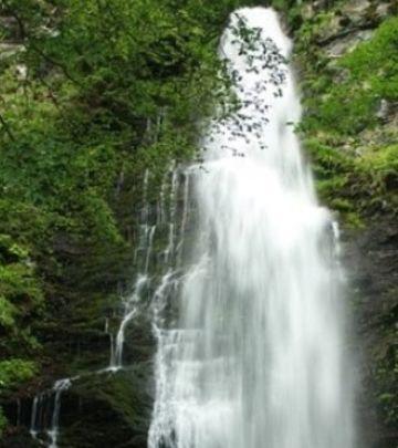 Otvoreno pismo iz dijaspore: Sačuvajmo reke Stare planine
