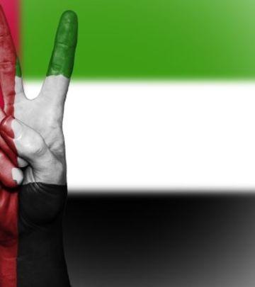 PRVI U SVETU: Emirati dobili domen sa jednim slovom