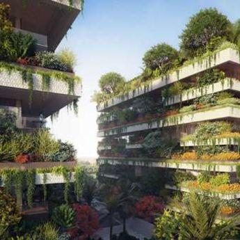 Nova prestonica Egipta: Zelena oaza u pustinji