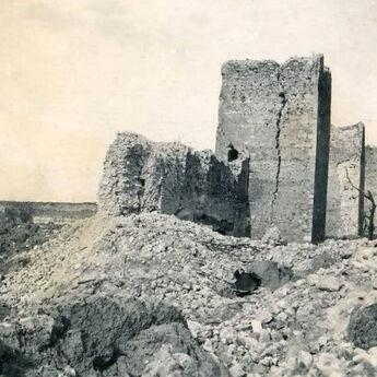 Zadužbina iz 14. veka spasila Vojvodinu 510 godina kasnije